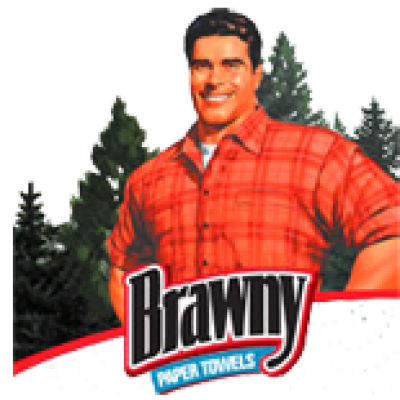 Save $1.00 on Brawny Paper Towels