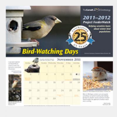"""Free 2012 """"Bird-Watching Days"""" Calendar"""