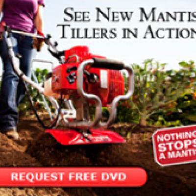 Free Mantis DVD