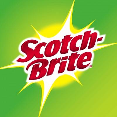 3M Brite Ideas Program
