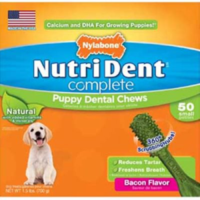 Nylabone Sweepstakes: Win $300 in NutriDent Products