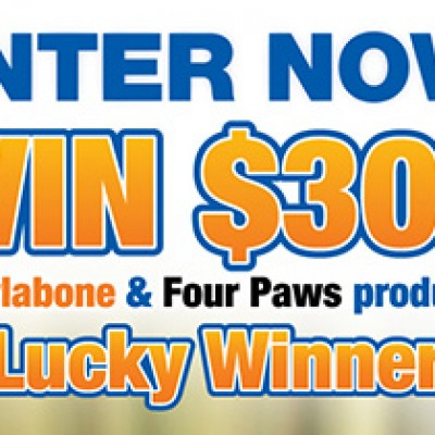 Nylabone Fall Sweepstakes - Ends October 31st