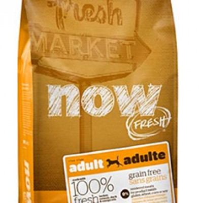 Free 1/2 Pound Bag Of Now Fresh or Go Dog Food