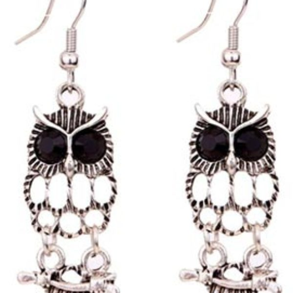 Tibetan Owl Earrings Only $3.96 Shipped