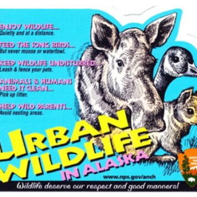 Free Urban Wildlife Stickers
