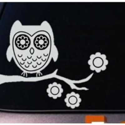 Vinyl Owl Decal Only $3.99 + Free Shipping