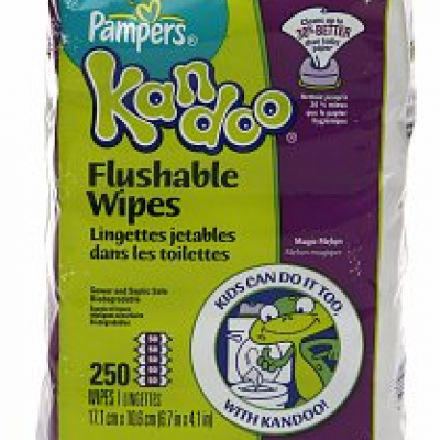 Pampers Kandoo Flushable Wipes Coupon