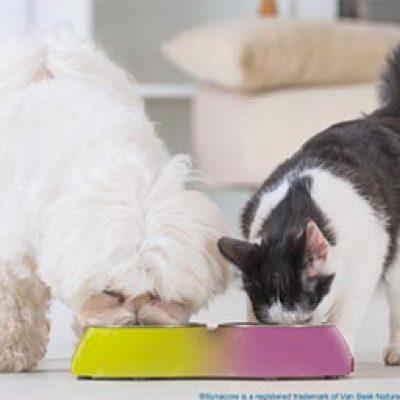 Free Pet Probiotic Samples