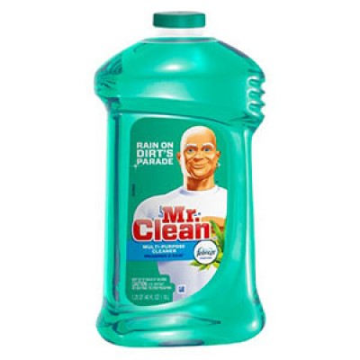 Mr. Clean Coupons