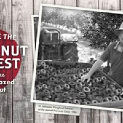 Krispy Kreme: Free Original Glazed Doughnut