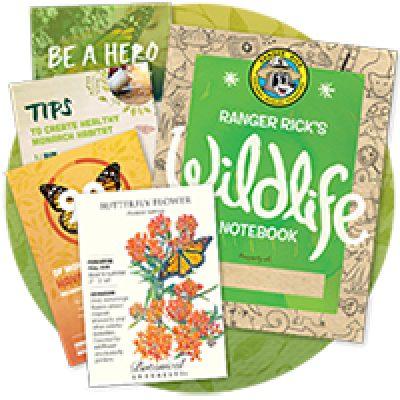 Free Butterfly Garden Starter Packet