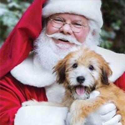 Free Pet Photo W/ Santa - Dec. 10th & 11th
