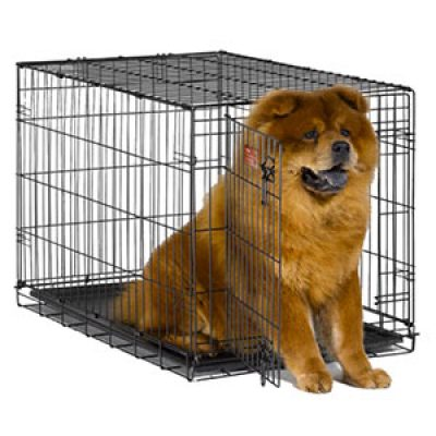 MidWest iCrate Folding Dog Crate Just $20.99 (Reg $74.99) + Prime
