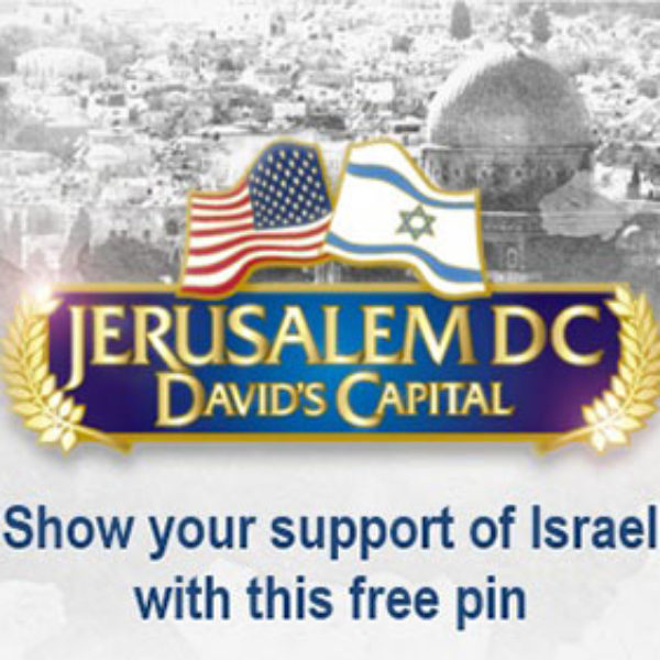 Free Support Israel Pin