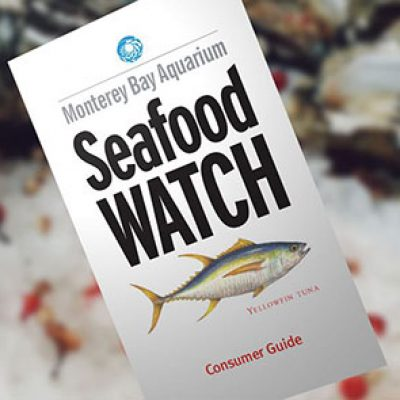 Free Seafood Watch Consumer Guide