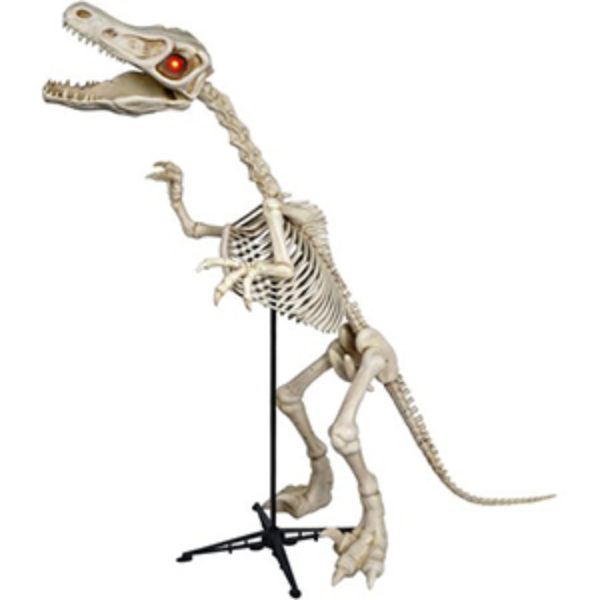 6Ft Skeleton Raptor LED Halloween Decoration Just $35.00 (Reg $99)