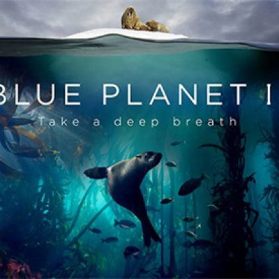 Free Blue Planet II Poster