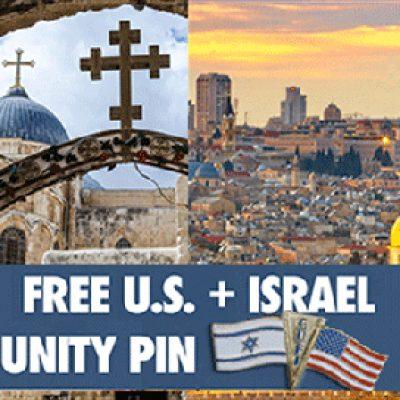 Free US + Isreal Unity Pin