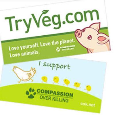 Free TryVeg Bumper Sticker