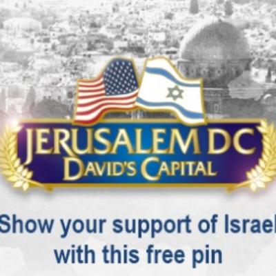 Free Israel / USA Pin